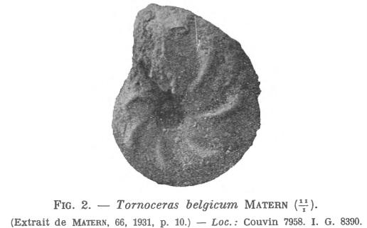 Matern 1931 - Figure 2