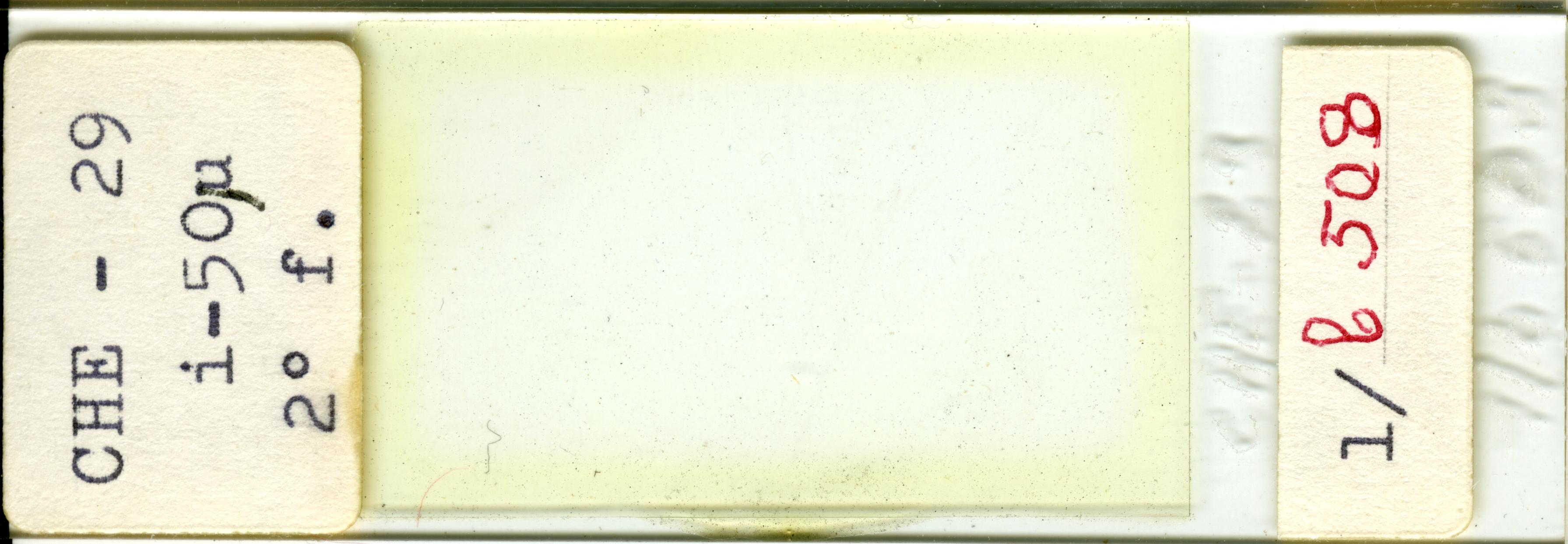 Lame n°CHE - 29 i-50µ 2° f. 1/b 508