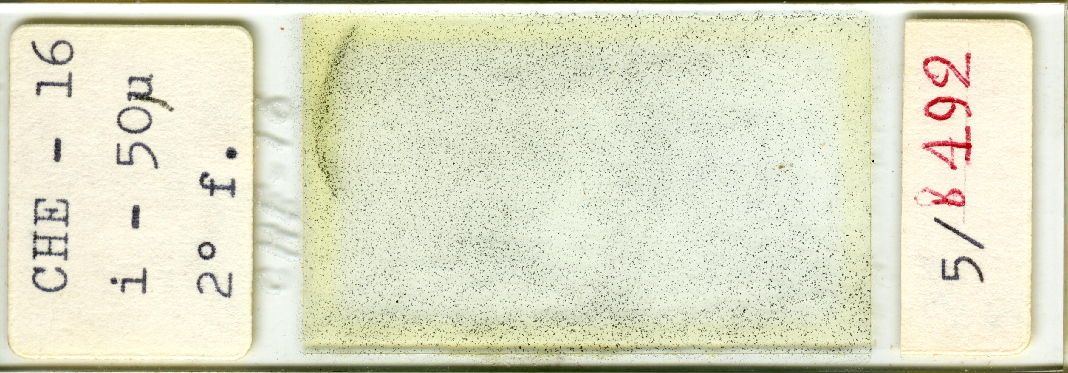 Lame n°CHE - 16 i - 50µ 2° f. 5/b 492