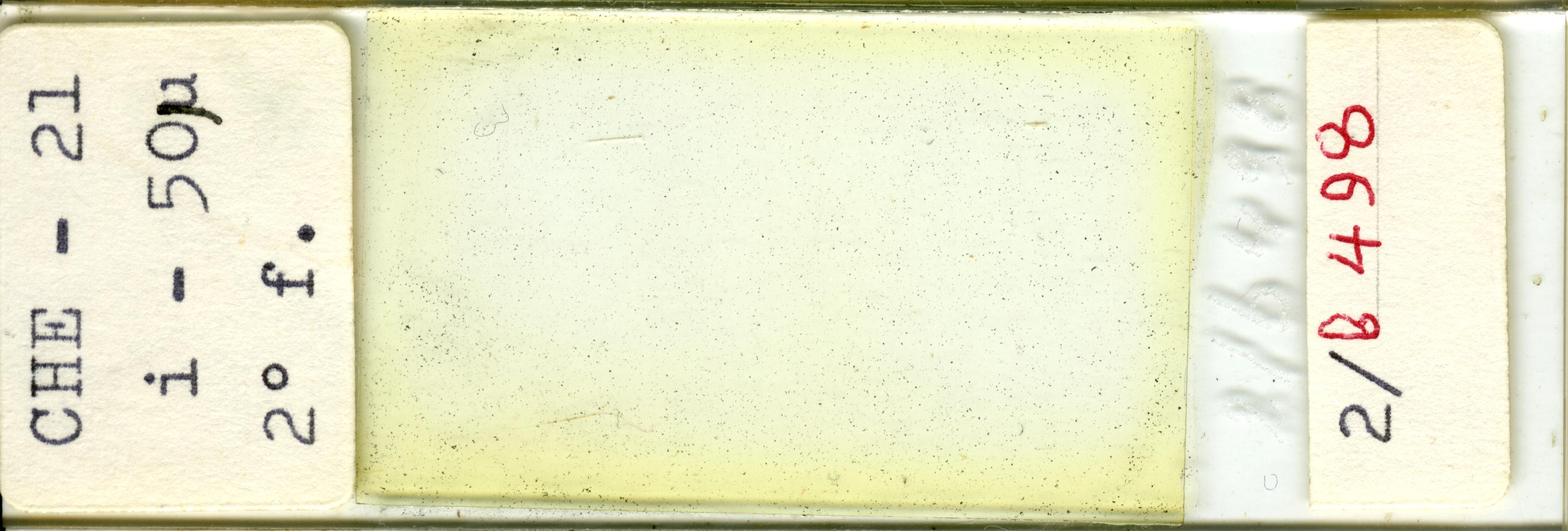 Lame n°CHE - 21 i - 50µ 2° f. 2/b 498