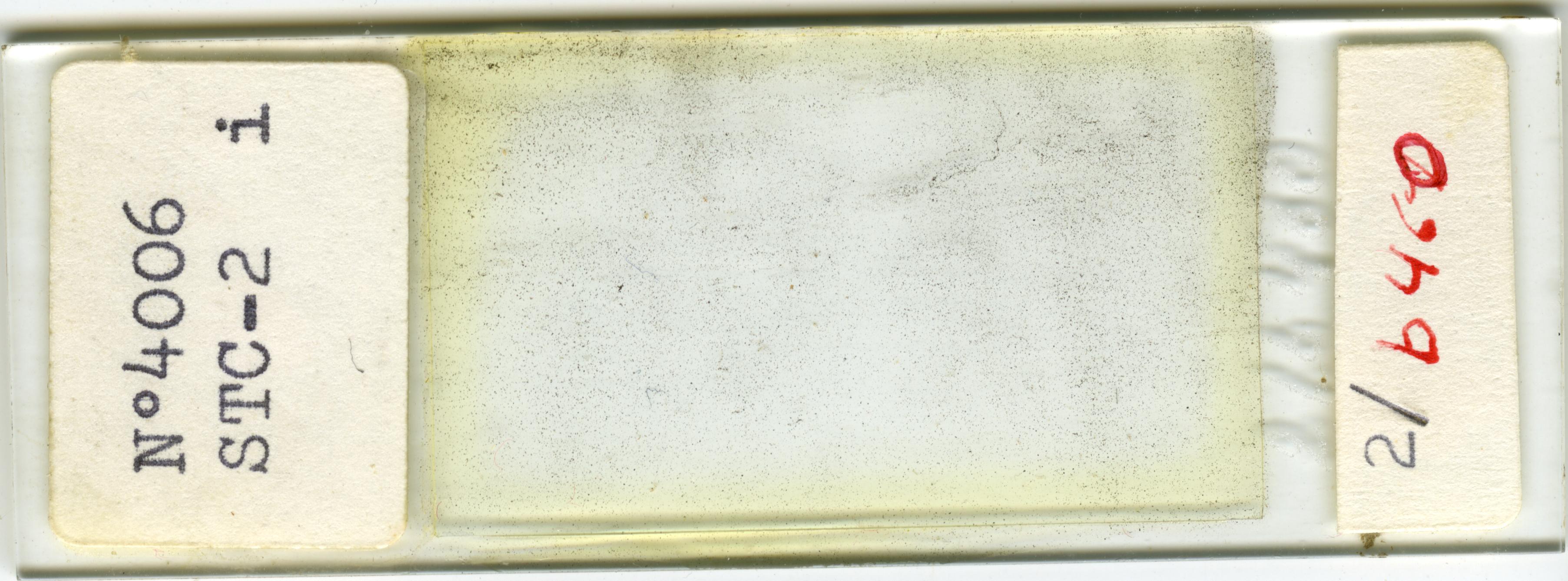 Lame n°4006 STC-2 i. 2/b 460
