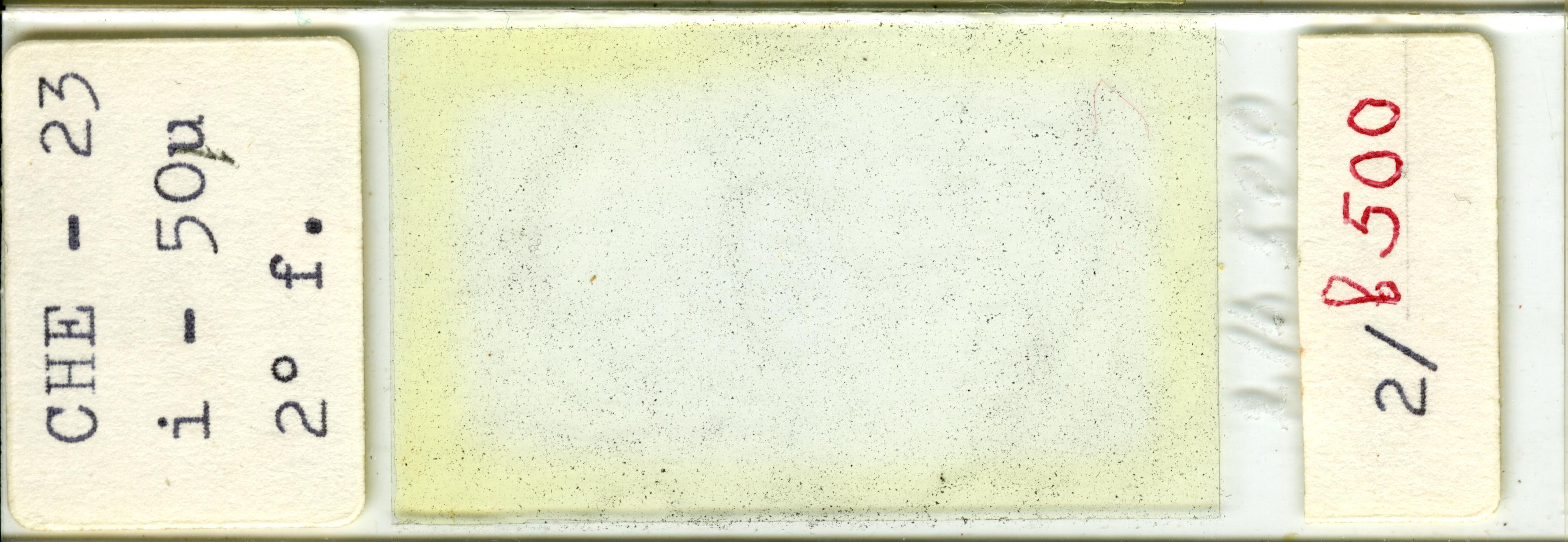 Lame n°CHE - 23 i - 50µ 2° f. 2/b 500