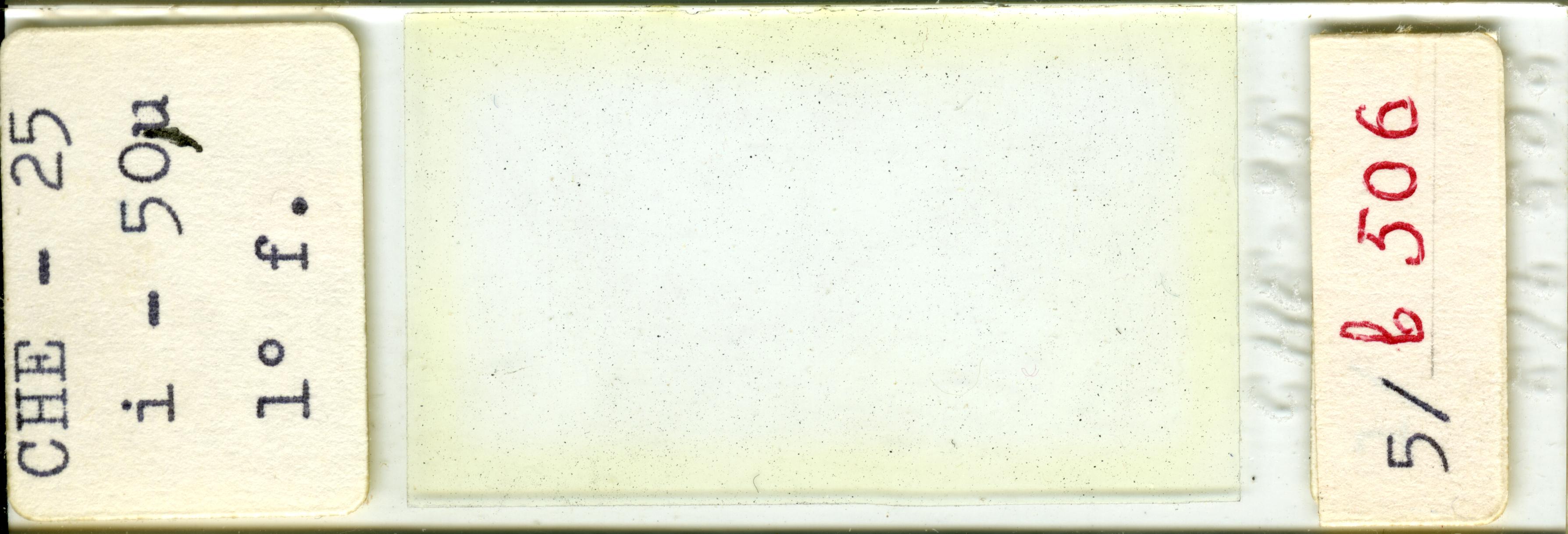 Lame n°CHE - 25 i - 50µ 1° f. 5/b 506