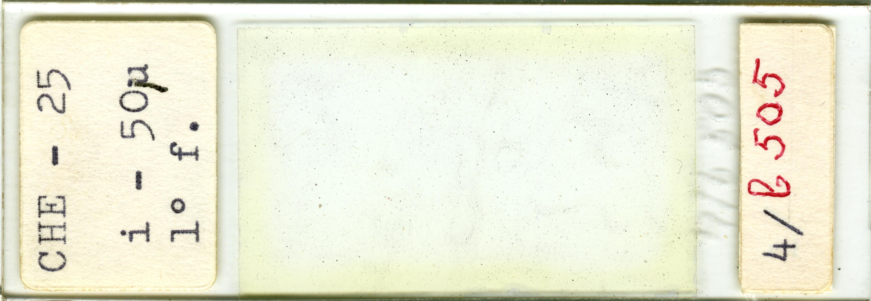Lame n°CHE - 25 i - 50µ 1° f. 4/b 505