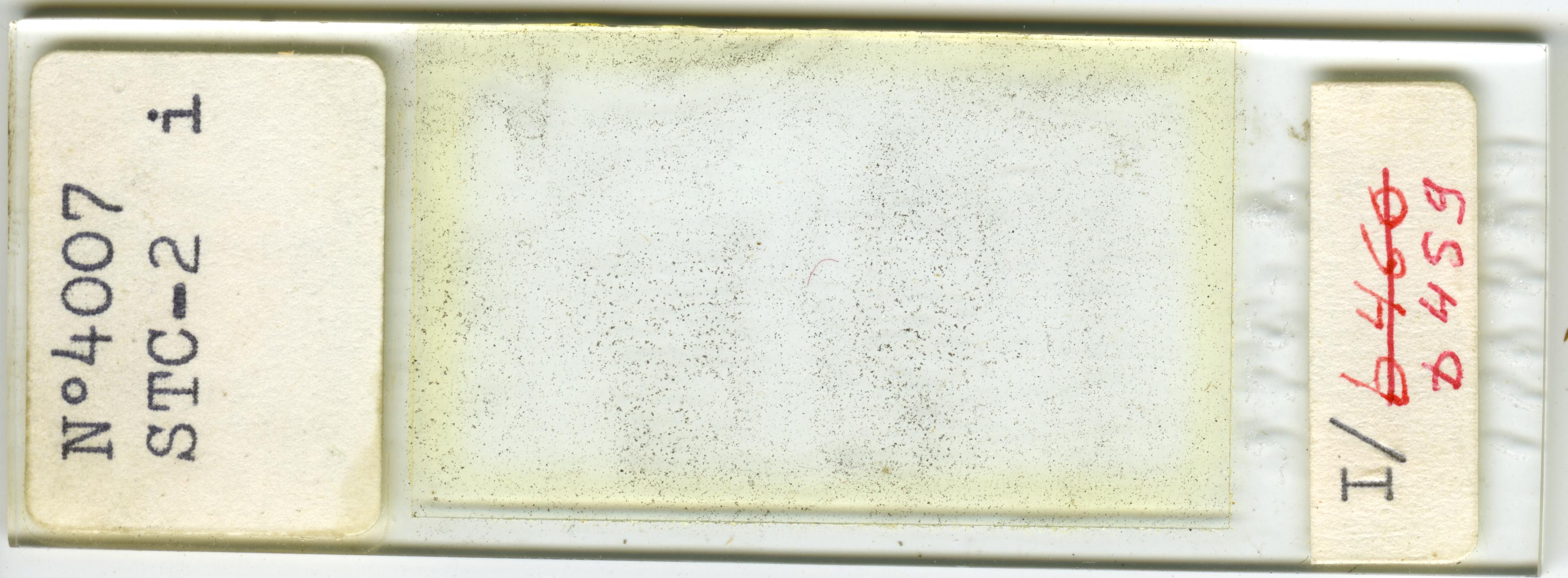 Lame n°4007 STC-2 i. I/b 459