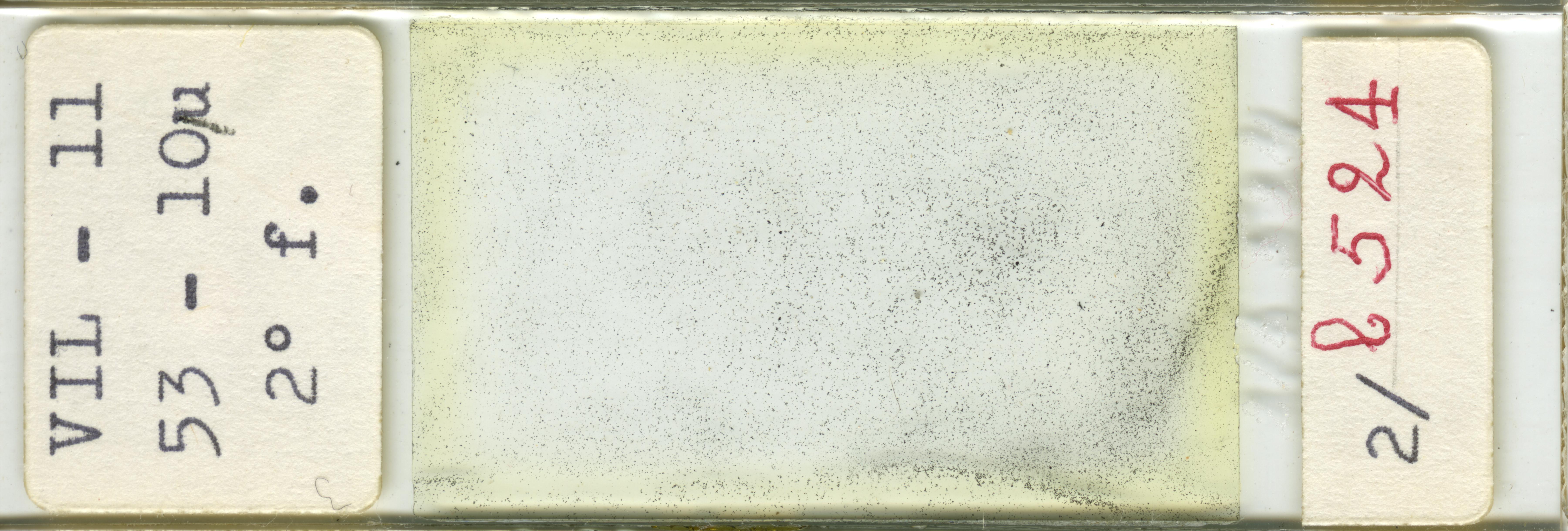 Lame n°VIL - 11 53 - 10µ 2° f. 2/b 524