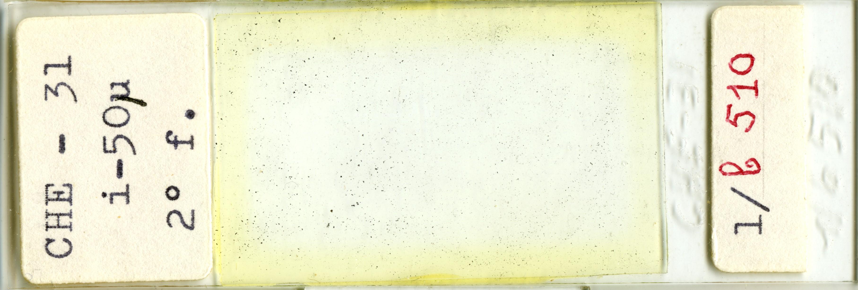 Lame n°CHE - 31 i-50µ 2° f. 1/b 510