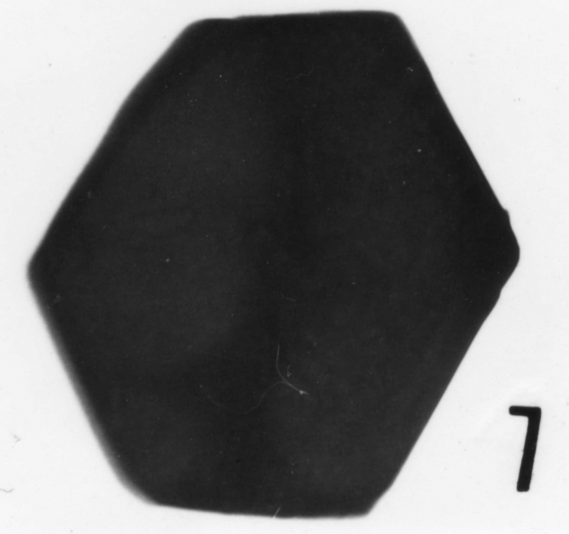 Fig. 7 - Graphite. Mas de Mougno : MOU-1. b 466.