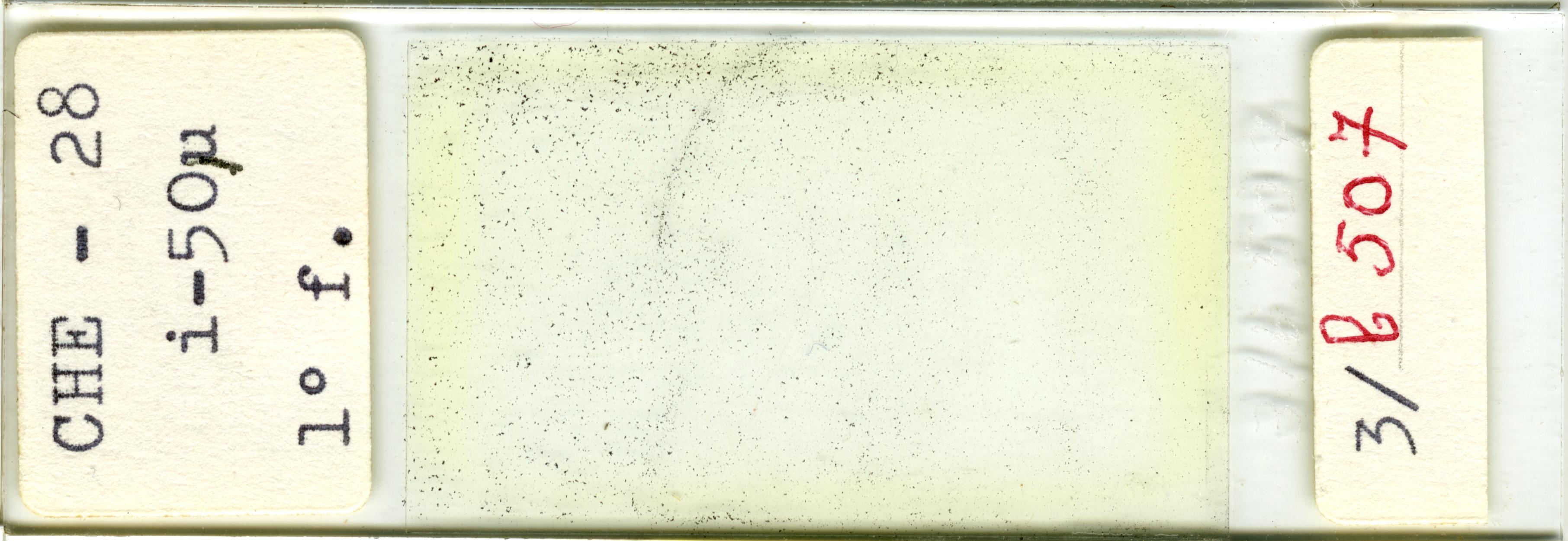 Lame n°CHE - 28 i-50µ 1° f. 3/b 507