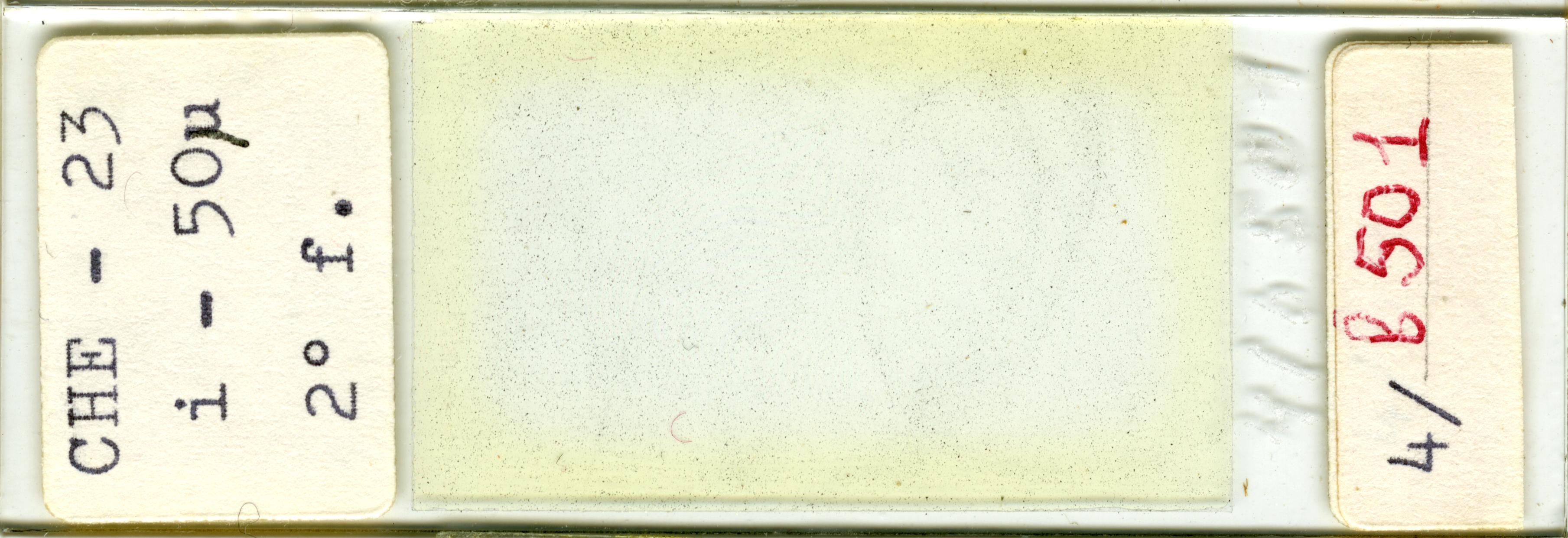 Lame n°CHE - 23 i - 50µ 2° f. 4/b 501