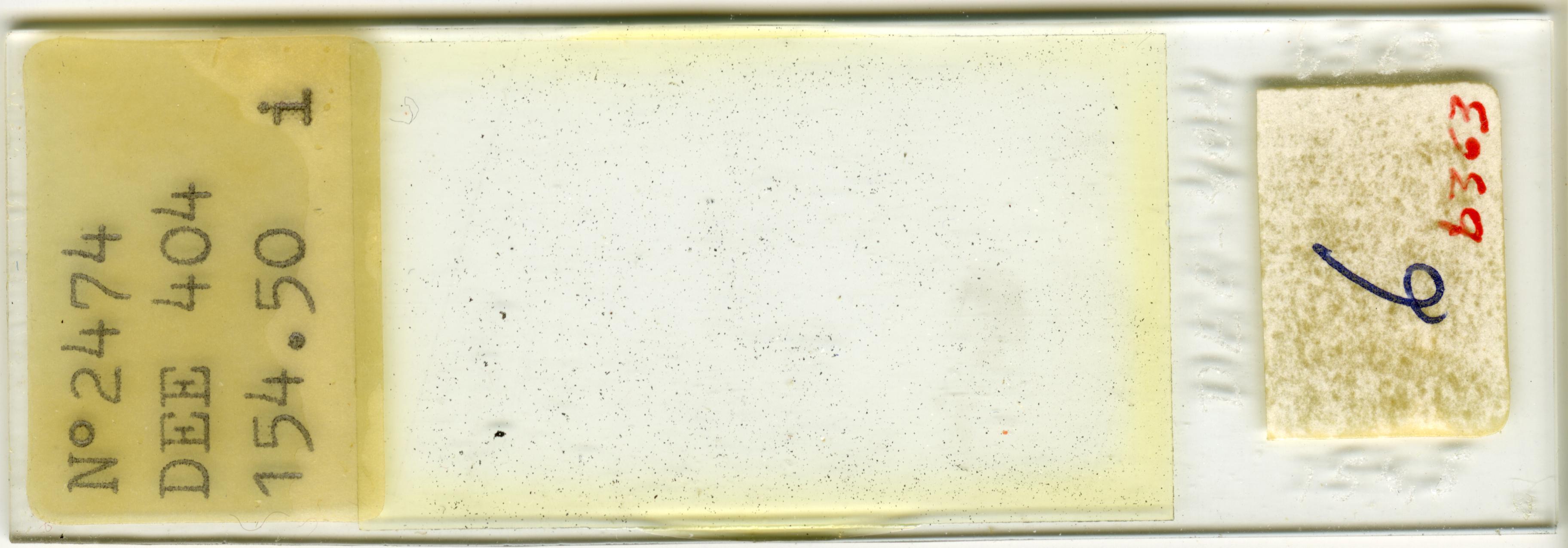 Lame n°2474 DEE 404 154.50 i. 6/b 363