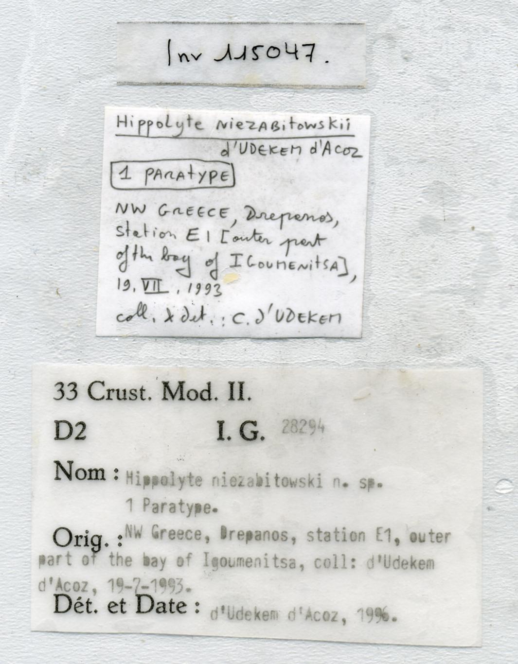 Hippolyte niezabitowskii d'Udekem d'Acoz, 1996 - label