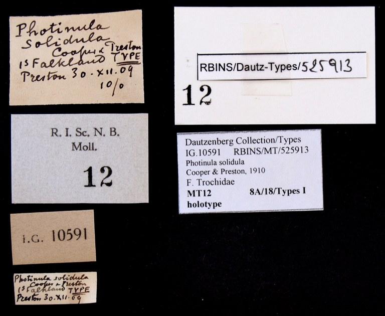 BE-RBINS-INV HOLOTYPE MT 12 Photinula solidula LABELS.jpg