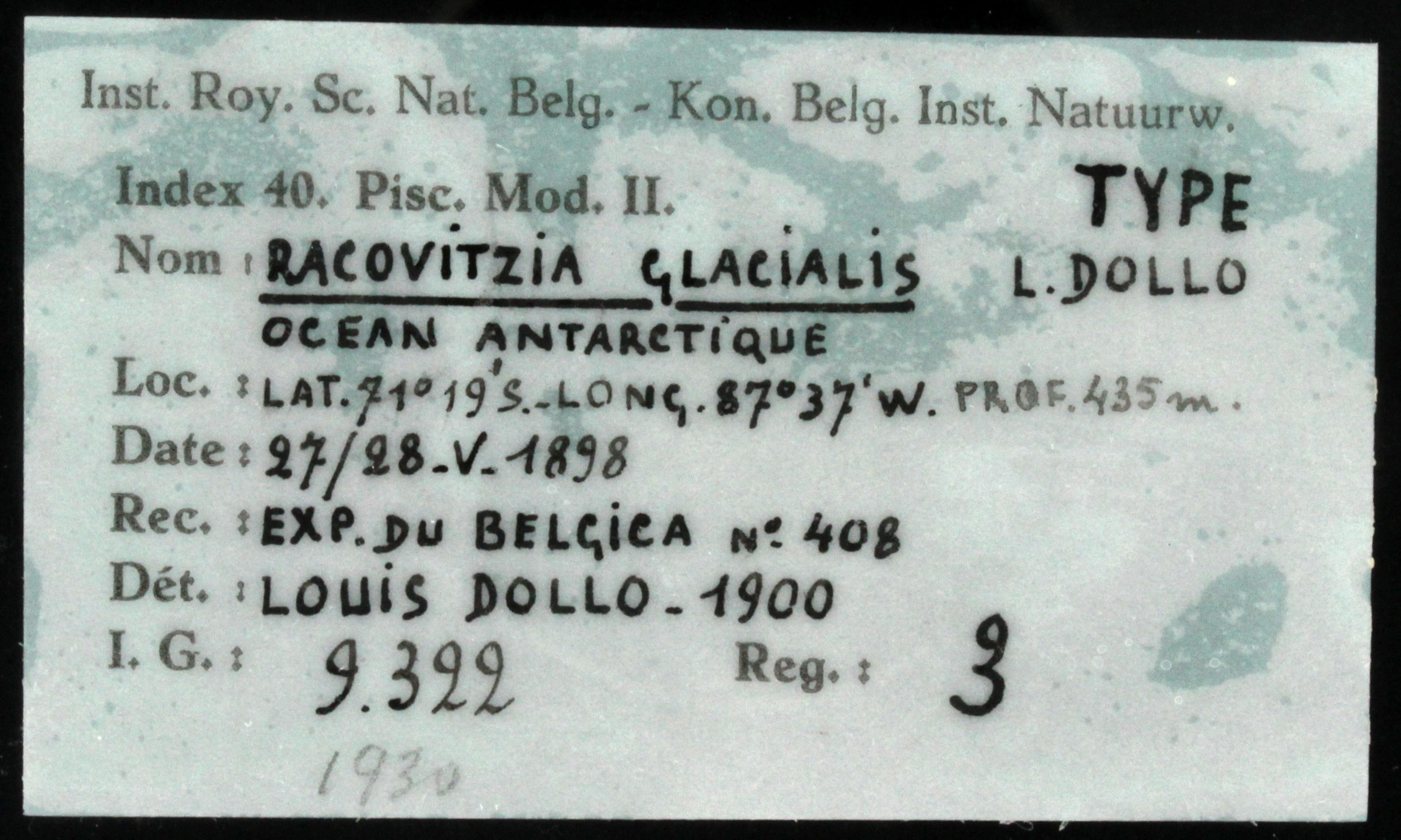3 Racovitza glacialis 9322 ticket.JPG